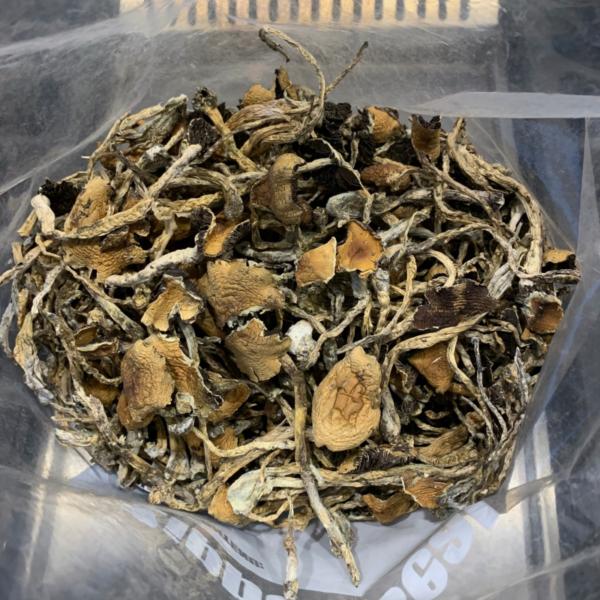 mushroom drug, shrooms online, psychedelic shrooms effects